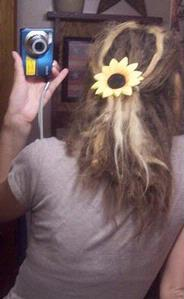 sunflower dreadies~